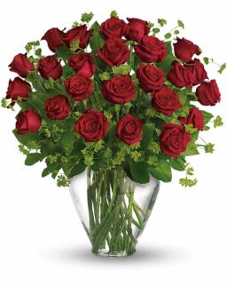 My Perfect Love - Long Stemmed Red Roses