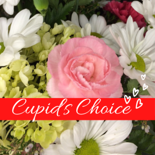 Cupid\'s Choice